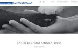 sito-ambulatorioveterinariosantostefano-progetti